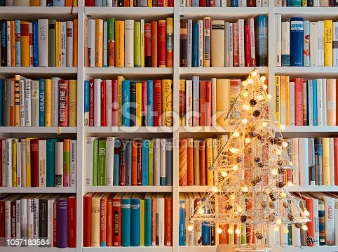 1057183432 istock photo Illuminated christmas tree standing in the library 1057183584