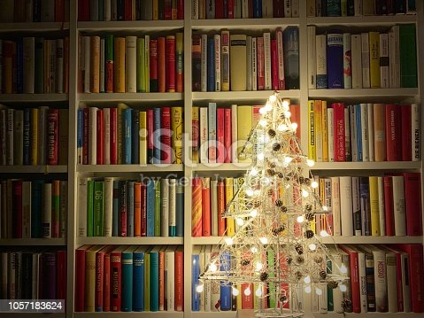 1057183432 istock photo Illuminated christmas tree standing in the library 1057183624
