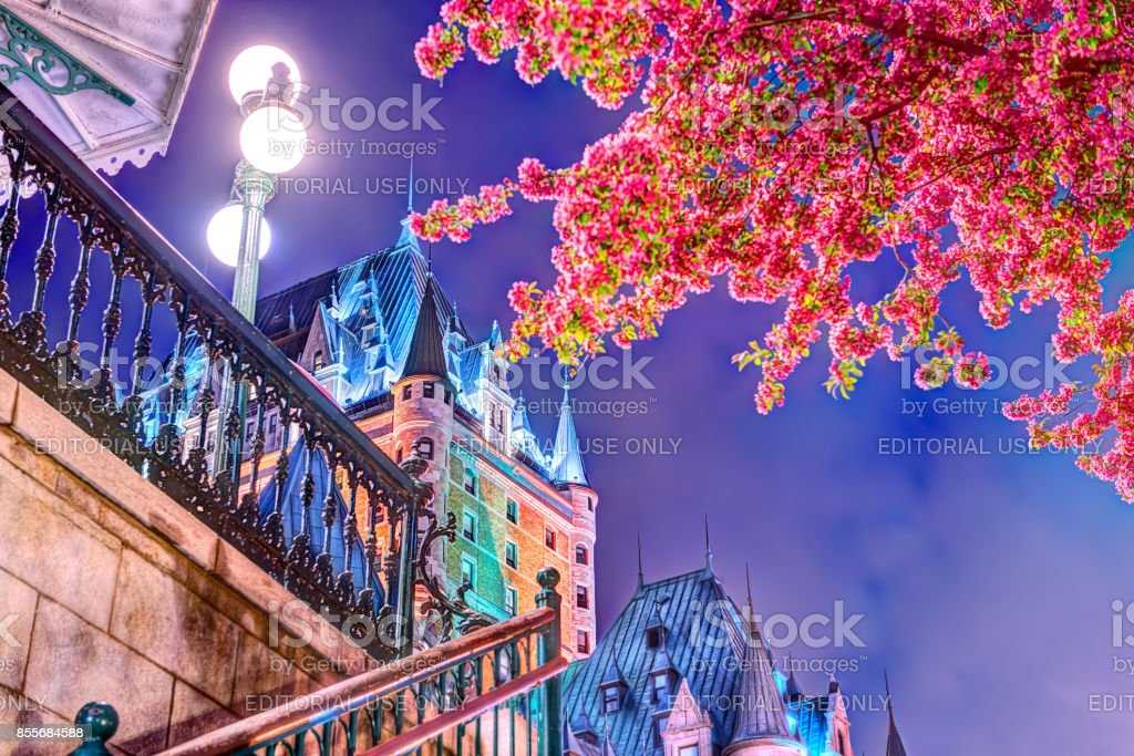 Illuminated crabapple blossom tree by escalier Chateau Frontenac hotel by funiculaire, night evening lamps, lanterns, stairs, steps, railing stock photo