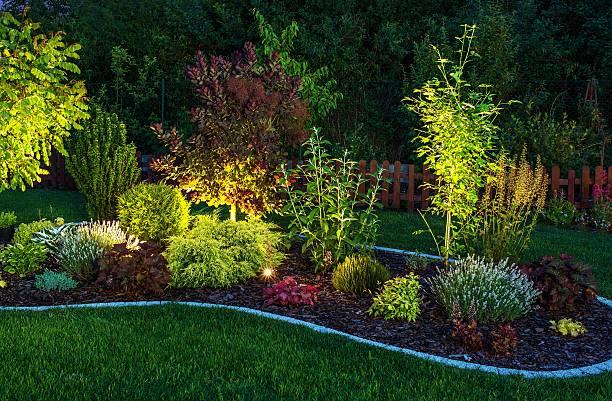 oświetlony ogród - błyszczący zdjęcia i obrazy z banku zdjęć