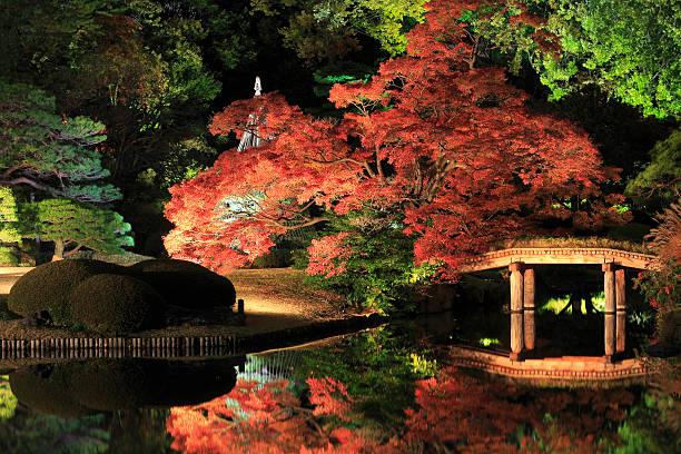 beleuchtet japanischen garten - kleinere sehenswürdigkeit stock-fotos und bilder