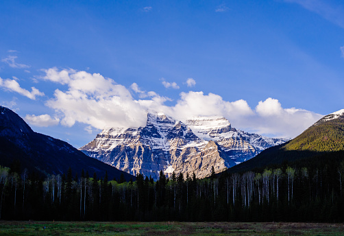 Illuminated mountain and clouds behind dark forest at Mt Robson, British Columbia, Canada.