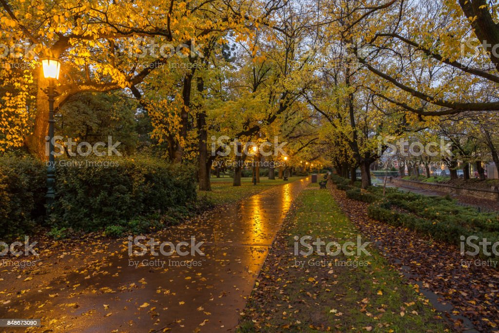 Illuminated park path in autumn stock photo