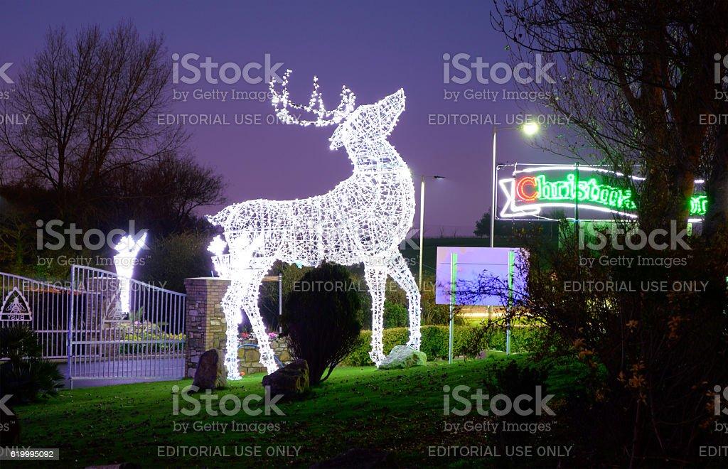 Illuminated Reindeer at Christmas stock photo