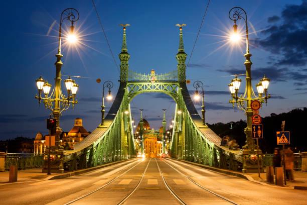 Illuminated view of Liberty Bridge in Budapest at night View of Liberty Bridge in Budapest at night liberty bridge budapest stock pictures, royalty-free photos & images