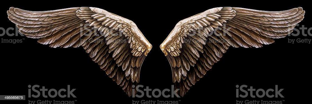 Illustrated Bird Wings stock photo