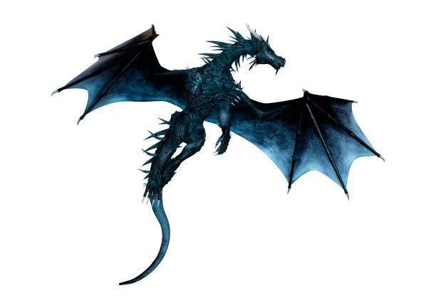 3D illustration black fantasy dragon on white 3D rendering of a black fantasy dragon isolated on white background dragon stock pictures, royalty-free photos & images