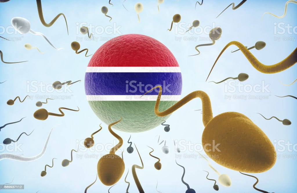 3D Illustration concept of emigration: Sperms swimming away from Gambia.(series) stock photo