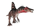 3D illustration dinosaur Spinosaurus on white