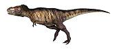 3D Illustration dinosaur tyrannosaurus on white
