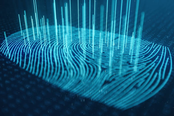 best fingerprint scanner stock photos pictures royalty free images istock