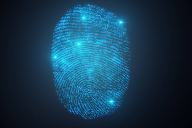 3D illustration Fingerprint scan provides security access with biometrics identification. Concept Fingerprint protection. 3D illustration Fingerprint scan provides security access with biometrics identification. Concept Fingerprint protection 3d scanning stock pictures, royalty-free photos & images