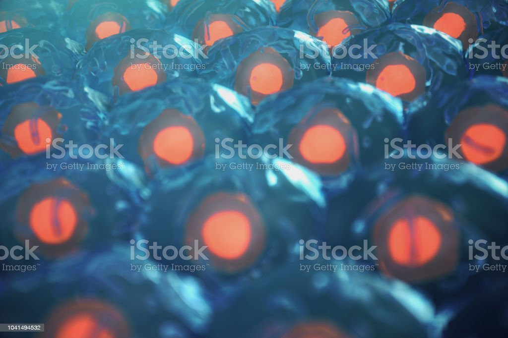 3D Illustration human cells. Cell colony. Concept of science and medicine, the regeneration of cells, the renewal of cells in the living organism. stock photo