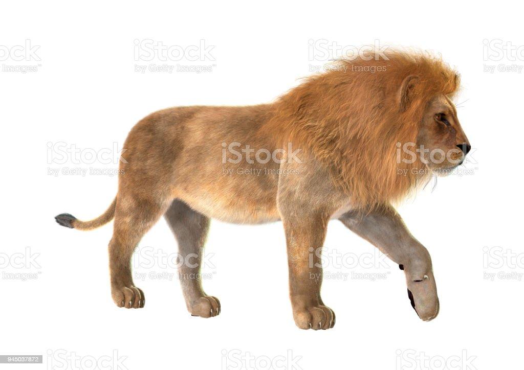 3D resimde beyaz erkek aslan stok fotoğrafı