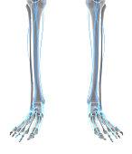 istock 3D illustration male nervous system. 579763086