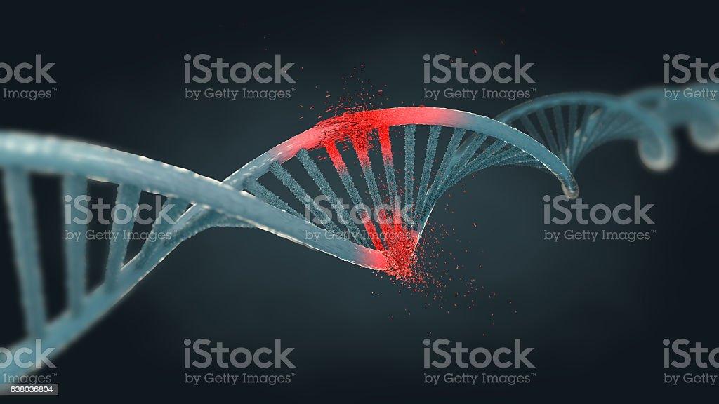 Illustration of a damaged ribonucleic acid or  dna strand – Foto