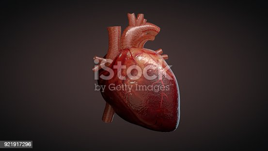 istock 3D illustration of a human heart 921917296