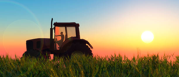illustration of a tractor circulating illustration of a tractor circulating in wheat field agricultural machinery stock pictures, royalty-free photos & images