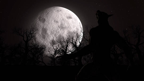 Illustration of a werewolf during the full moon in the creepy forest stock photo