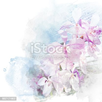 Illustration of beautiful blossom dendrobium orchid. Artistic floral abstract background. Watercolor painting (retouch).