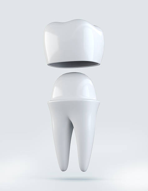 3D illustration of Crown tooth on white background. 3D illustration of Crown tooth on white, dental concept. tooth crown stock pictures, royalty-free photos & images