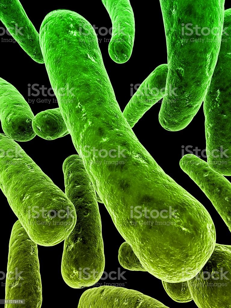 Illustration of enlarged green bacteria royalty-free stock photo