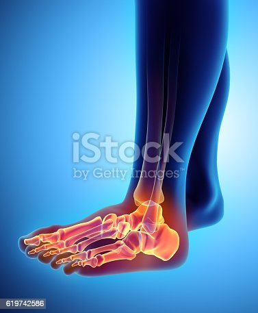 istock 3D illustration of Foot Skeleton, medical concept. 619742586