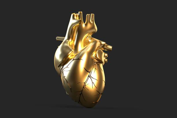 Illustration of golden human heart. 3D illustration stock photo