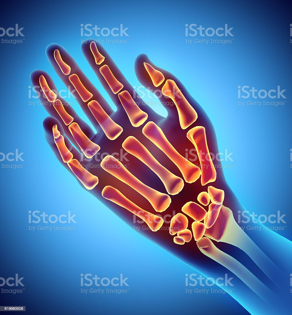 3D illustration of Hand Skeleton, medical concept. stock photo