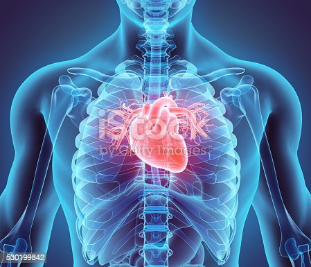 istock 3D illustration of Heart, medical concept. 530199842