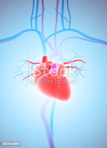 istock 3D illustration of Heart, medical concept. 592649986