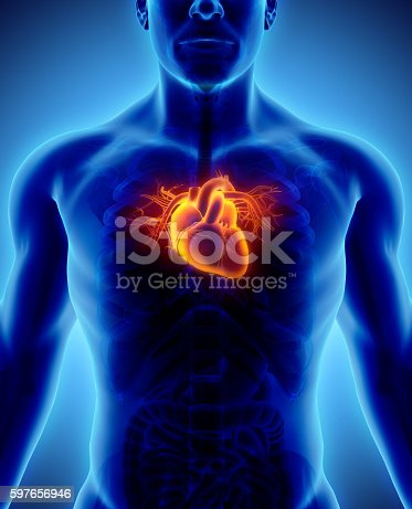 istock 3D illustration of Heart, medical concept. 597656946