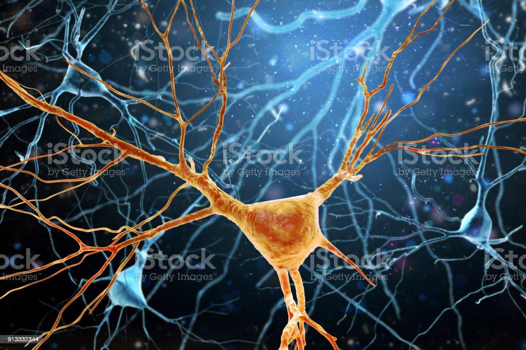3D Illustration of Human Brain Neurons structure. 3D Illustration of Human Brain Neurons structure. A high resolution. Afferent Stock Photo