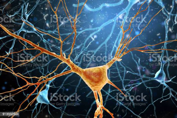 3d Illustration Of Human Brain Neurons Structure Stock Photo - Download Image Now