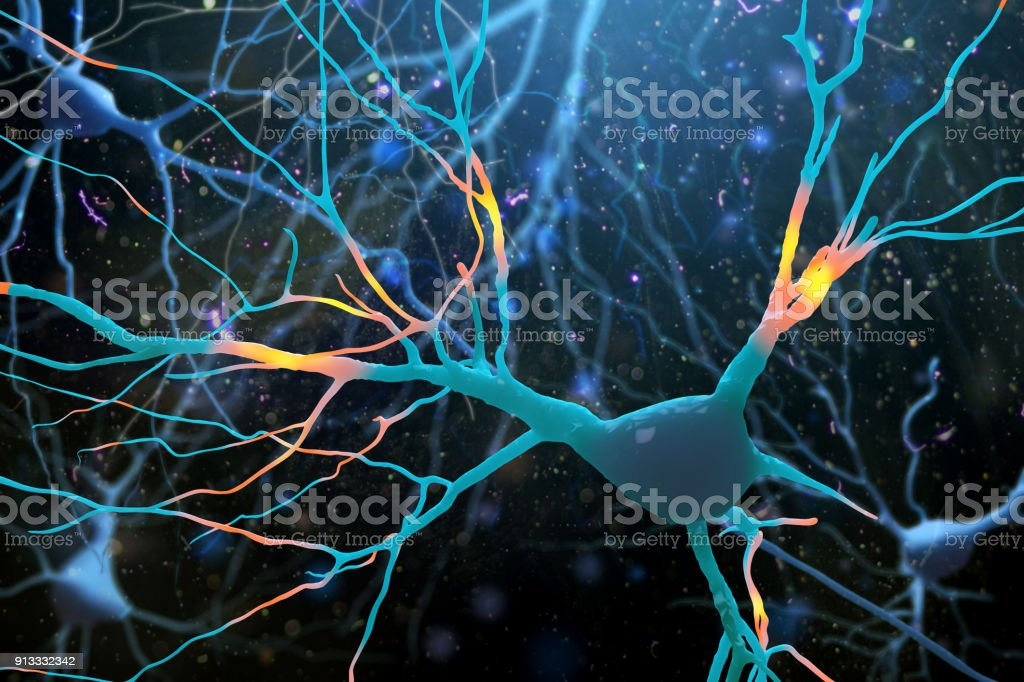 3D Illustration of human nerve cells structure. stock photo