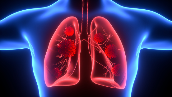 Breathing Exercise, Respiratory System, The Human Body, Human Lung, Anatomy