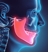 istock 3D illustration of Mandible, medical concept. 533565650