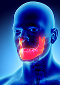 istock 3D illustration of Mandible, medical concept. 585051820