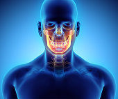 istock 3D illustration of Mandible, medical concept. 636681280
