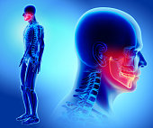 istock 3D illustration of Mandible, medical concept. 854103474