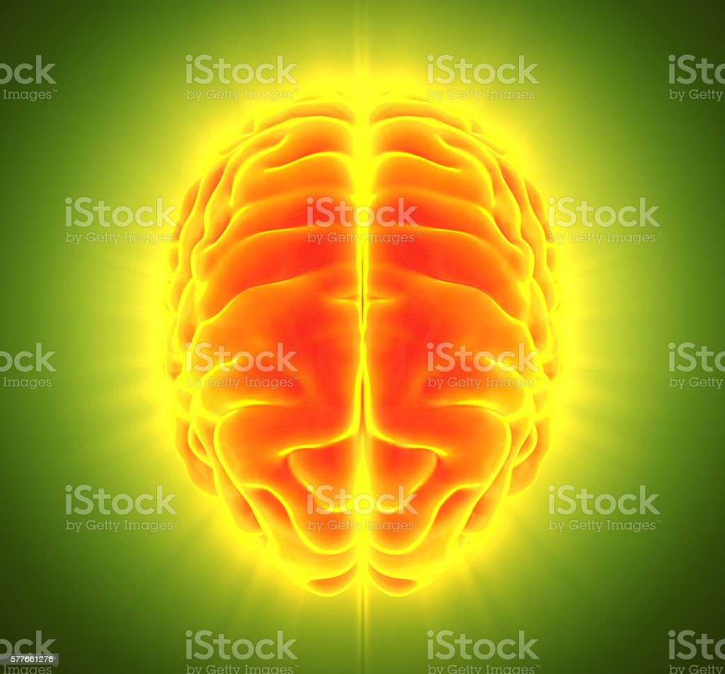 3D illustration of orange blue brain. stock photo