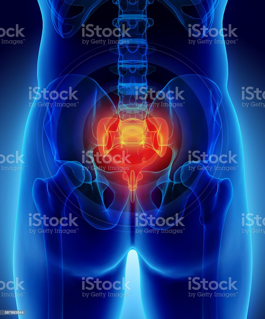 3D illustration of Sacrum painful. stock photo