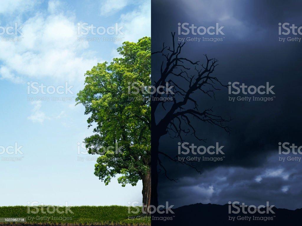 ilustração de salvar o meio ambiente. Poluição destruir a natureza. O conceito do clima mudou. Árvore de meio viva e meio morta. - foto de acervo