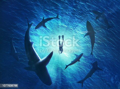 istock Illustration of sharks forming a circle under a man in water 1077638766