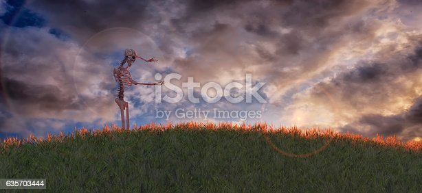 3d Illustration Of Skeleton Stock Photo & More Pictures of Adult