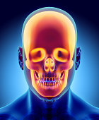 istock 3D illustration of skull anatomy - part of human skeleton. 585053344