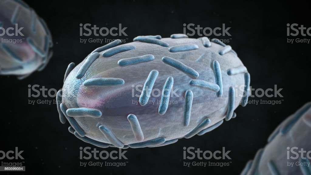3D illustration of smallpox  virus stock photo
