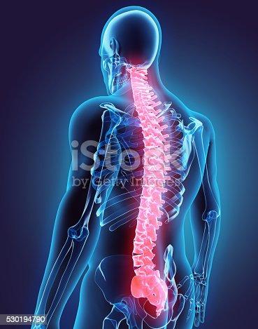 istock 3D illustration of Spine, medical concept. 530194790