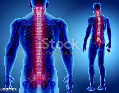 istock 3D illustration of Spine, medical concept. 860775922