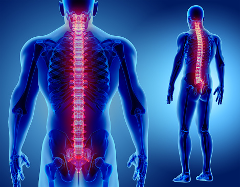 3d Illustration Of Spine Medical Concept Stock Photo - Download Image Now